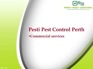 Pesti pest control perth