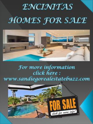 Encinitas Highlands Homes For Sale