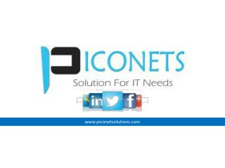 PICONETS – The best professional service company from India