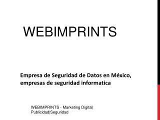 Empresa de Seguridad de Datos en M�xico