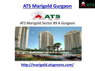 ATS Marigold Gurgaon Sec 89 A