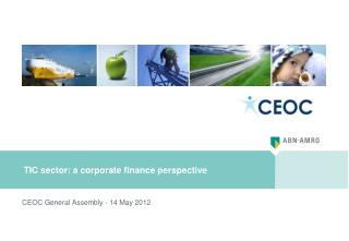 TIC sector: a corporate finance perspective