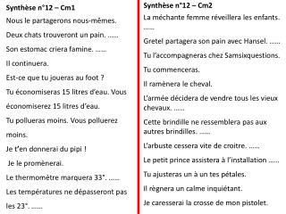 Synthèse n°12 – Cm1 Nous le partagerons nous-mêmes. Deux chats trouveront un pain. ……