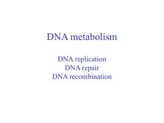 DNA metabolism DNA replication DNA repair DNA recombination