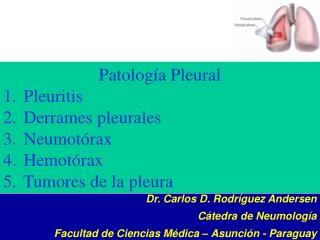 Patología Pleural  Pleuritis  Derrames pleurales  Neumotórax  Hemotórax  Tumores de la pleura