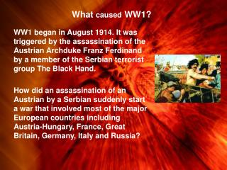 What  caused  WW1?