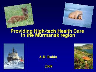 Providing High-tech Health Care    in the Murmansk region