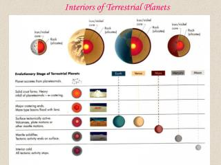 Interiors of Terrestrial Planets