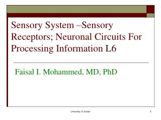 Sensory System  – Sensory Receptors; Neuronal Circuits For Processing Information  L6