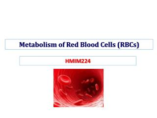 Metabolism of Red Blood Cells (RBCs)