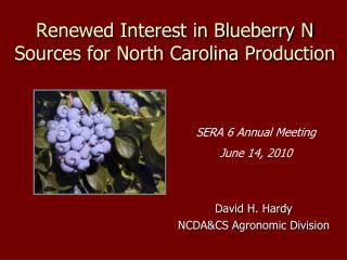Renewed Interest in Blueberry N Sources for North Carolina Production