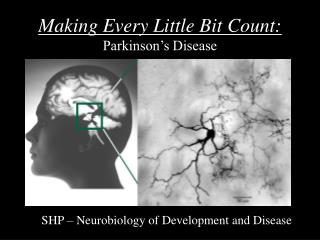 Making Every Little Bit Count: Parkinson's Disease