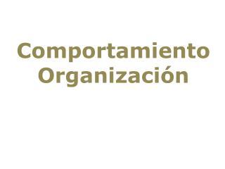 Comportamiento Organizaci�n