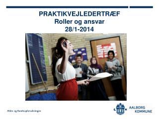 PRAKTIKVEJLEDERTRÆF Roller og ansvar 28/1-2014