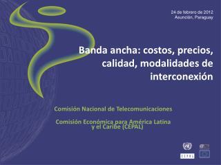 Banda ancha: costos, precios, calidad, modalidades de interconexión