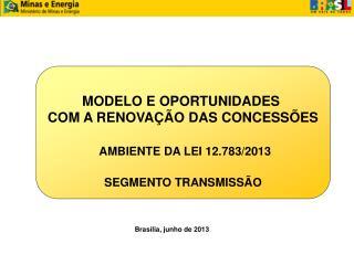 MODELO E OPORTUNIDADES  COM A RENOVAÇÃO DAS CONCESSÕES AMBIENTE DA LEI 12.783/2013