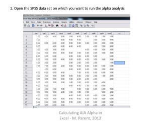 1. Open the SPSS data set on which you want to run the alpha analysis