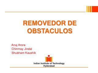 REMOVEDOR DE OBSTACULOS