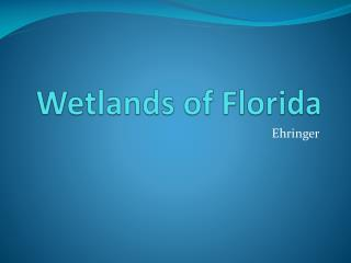 Wetlands of Florida