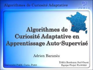 Algorithmes de Curiosité Adaptative en Apprentissage Auto-Supervisé