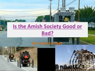 Is the Amish Society Good or Bad?