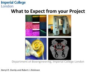 What to Expect from your  Project