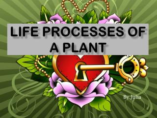 Life processes of a plant