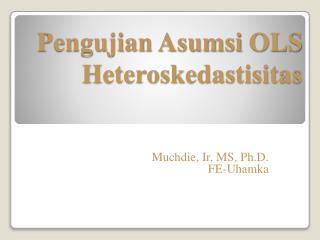 Pengujian Asumsi  OLS Heteroskedastisitas