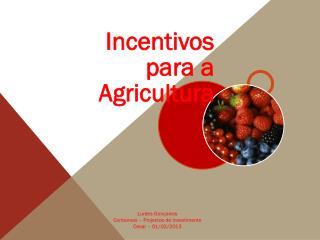 Lurdes Gonçalves  Contamais – Projectos de Investimento Cesar – 01/02/2013