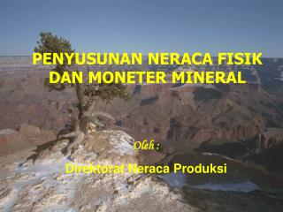 PENYUSUNAN NERACA FISIK DAN MONETER MINERAL