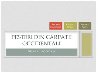 Pesteri din  carpatii Occidentali