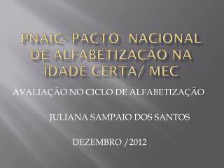 PNAIC- Pacto  Nacional de Alfabetização na Idade Certa/ MEC