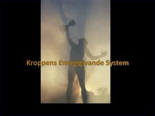 Kroppens Energigivande System