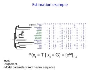 Estimation example