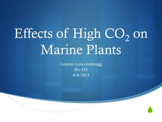 Effects of High CO 2  on Marine Plants