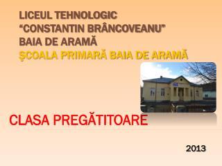 """LICEUL TEHNOLOGIC  """"CONSTANTIN BRÂNCOVEANU"""" BAIA DE ARAMĂ ŞCOALA PRIMARĂ BAIA DE ARAMĂ"""
