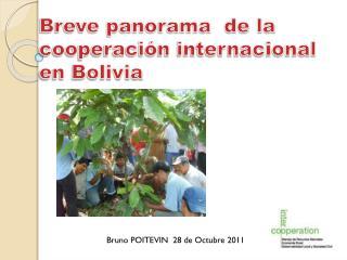 Breve panorama  de la cooperaci�n internacional en Bolivia