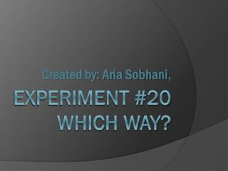 Experiment #20 Which Way?