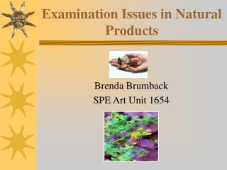 Examination Issues in Natural Products