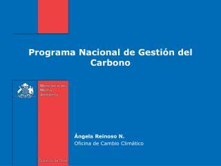 Programa Nacional de Gestión del Carbono