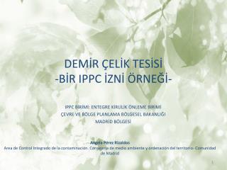 DEMİR ÇELİK TESİSİ - BİR IPPC İZNİ ÖRNEĞİ -