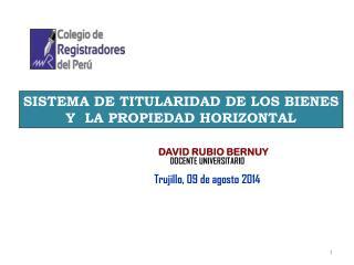 SISTEMA DE TITULARIDAD DE LOS BIENES Y  LA PROPIEDAD HORIZONTAL