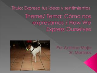 Theme/  Tema :  Cómo nos expresamos  /  H ow  W e  E xpress  O urselves