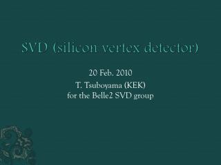 SVD (silicon vertex detector)