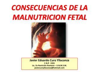 CONSECUENCIAS DE LA  MALNUTRICION FETAL