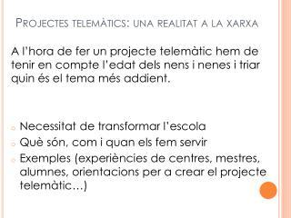 Projectes telemàtics: una realitat a la xarxa