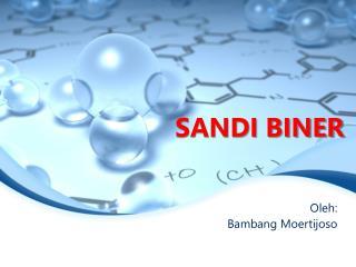 SANDI BINER