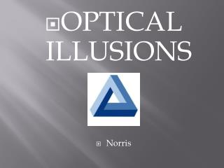 OPTICAL ILLUSIONS Norris