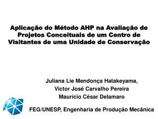 Juliana  Lie  Mendonça  Hatakeyama ,  Victor José Carvalho Pereira Maurício César  Delamaro