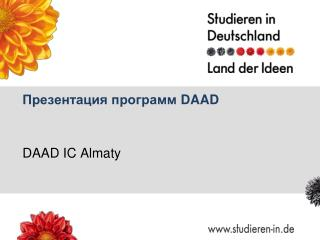 Презентация программ  DAAD